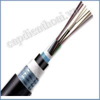 Cáp quang cống kim loại 12FO. Cáp quang luồn cống (cáp ngầm) kim loại 12 core, 12 sợi, 12 lõi