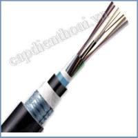 Cáp quang cống kim loại 24FO (24 core / 24 sợi). Dây cáp quang luồn cống (kéo cống, kéo ngầm) có kim loại 24 Fo, 24 core, 24 lõi, 24 sợi.