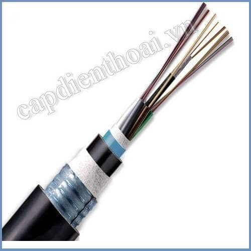 cap-quang-cong-kim-loai-24Fo