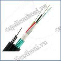 Cáp quang treo kim loại 12FO. Là loại cáp quang 12 sợi single mode có dây gia cường chịu lực và chứa băng thép bên trong bảo vệ