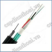 Cáp quang treo kim loại 4 sợi (4 core / 4 FO / 4 lõi / 4Fo)