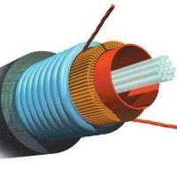 Cáp quang AMP multimode 8Fo, 8 sợi, 8 core, 8 lõi